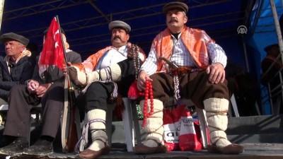 Germencik'te deve güreşleri festivali yapıldı - AYDIN