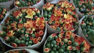 Kesme çiçek sektöründe 100 milyon dolarlık hedef