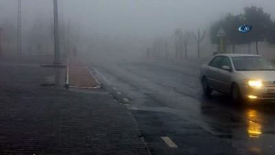 Şanlıurfa'da sis etkili oldu