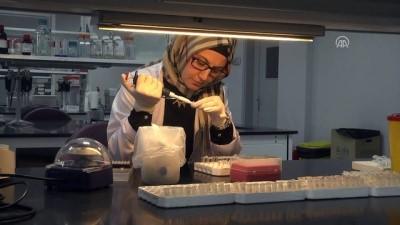 'Biobank' Türkiye'nin 'gen hafızası'nı oluşturacak - KAYSERİ