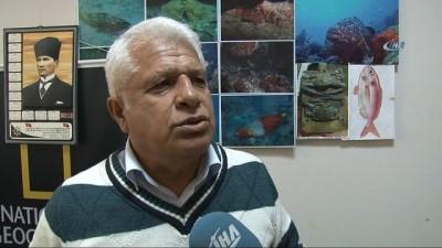 Mersin Dana Adası açıklarında ilk kez 'Manda Göz' balığı yakalandı