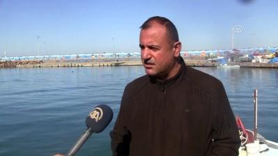 Batı Karadeniz'de balık kıtlığı - DÜZCE