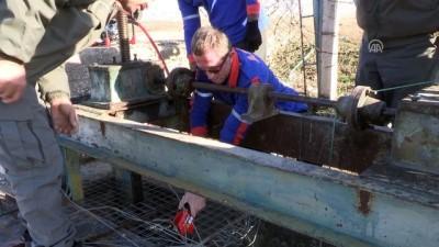 Gölde mahsur kalan kuşları AFAD ekipleri kurtardı - BURDUR