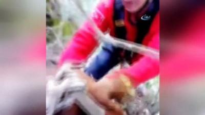Kayalıklardan düşen keçileri itfaiye kurtardı