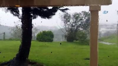 - Japonya'yı Trami tayfunu vurdu - En az 2 kişi öldü, hayat felç oldu