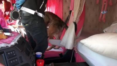 kopek -  Tıra saklanan uyuşturucuyu detektör köpek buldu
