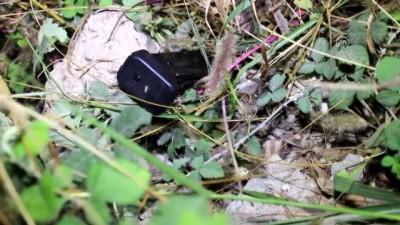 mermi - Barda silahlı kavga: 1 gözaltı - ADANA