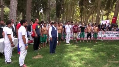 sivil toplum - Nusaybin'de '1. Karakucak Güreşleri ve Flyboard gösterileri' - MARDİN