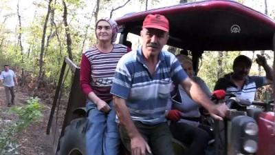 Ormanın emektar kadın işçisi - ZONGULDAK