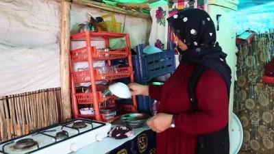 Tarım işçisi kadının çadır ile tarla arasında geçen ömrü - ADANA