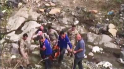 kopek -  40 kişi kaybolan hastayı bulmak için seferber oldu