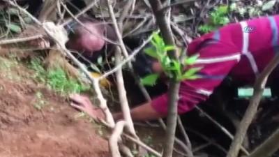 bulduk -  Başına sıkışan bidonla kaybolan köpek kurtarıldı