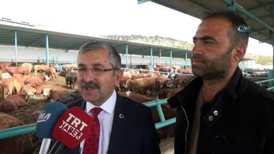 allah -  Başkan Vidinel'den besi çiftliğine ziyaret
