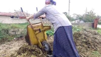 Çiftçi 'Feride Abla'nın azmi takdir topluyor (1) - KIRKLARELİ
