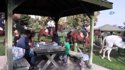 allah -  - Şahinbey Belediyesi çocukları midilli atlarıyla buluşturdu