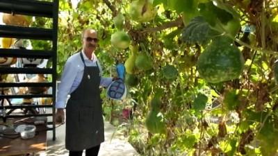 ekince -  Emekli ziraatçı su kabaklarını sanat eserine dönüştürüyor
