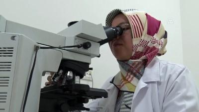 yurt disi - Türk patolog dünyada en etkin 100 isim arasına girdi - KONYA