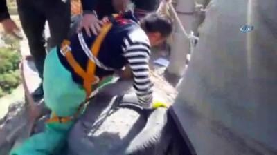 150 metrede mahsur kalan köpeği kurtarma operasyonu kamerada