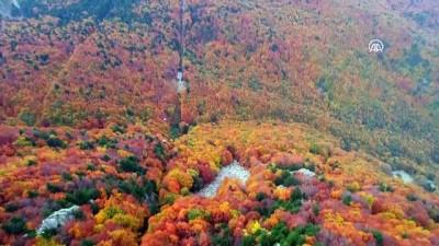 Uludağ'a teleferikle rengarenk sonbahar yolculuğu - BURSA