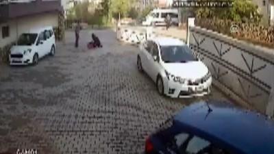 Anneyle kızına sokak köpekleri saldırdı - KIRŞEHİR