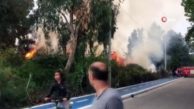 Kuş cennetinde korkutan yangın