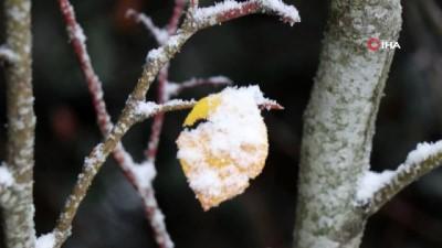 hava sicakligi -  Türkiye'nin yüksek kesimlerinde kar yağışı etkili oluyor