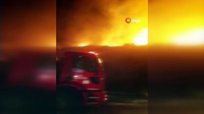 Bodrum'da makilik yangınında 5 hektarlık alan kül oldu