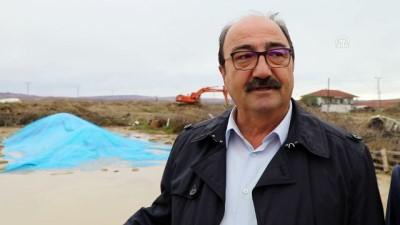 Çankırı'da sağanak 4 bin ton pirince zarar verdi