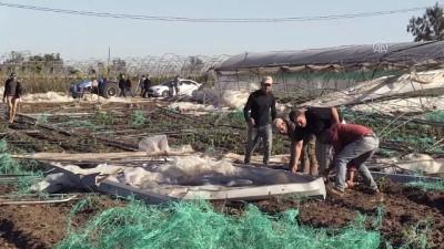 Mersin'de dolunun zarar verdiği seralarda inceleme