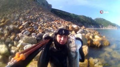 Milli sporcu, zıpkınıyla Karadeniz'i keşfediyor