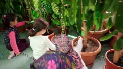 İmam yetiştirdiği bitkilerle camiyi botanik bahçesine dönüştürdü