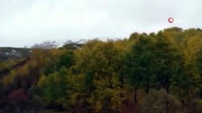 Tunceli'de kar ve tipiye yakalanan timde 1 askerimiz şehit oldu