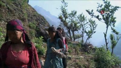 - Nepal'de Son Üç Ayda En Az 876 Çocuk Kayboldu