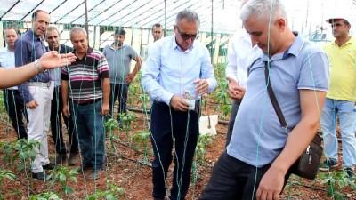 Serik'te solucan gübresi ile tarım uygulaması yapıldı