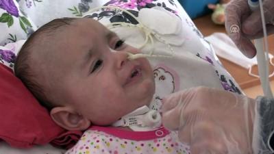 SMA hastası Hafsa bebek yaşama tutunmaya çalışıyor - KARABÜK