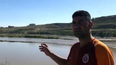 Cizre'de nehrin ortasında mahsur kalan eşek kurtarıldı - ŞIRNAK
