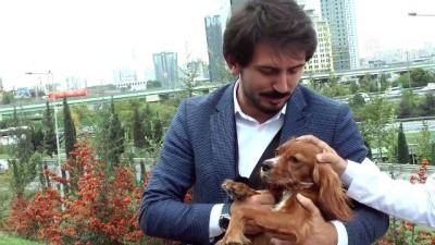 hassasiyet - Genç Ensar'dan 'Hayvanları Koruma Günü' mesajı - İSTANBUL
