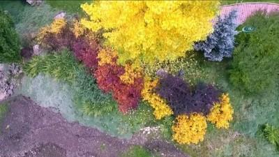 Hazan mevsiminde vatandaşların ilgi odağı Ata Botanik Parkı, havadan görüntülendi