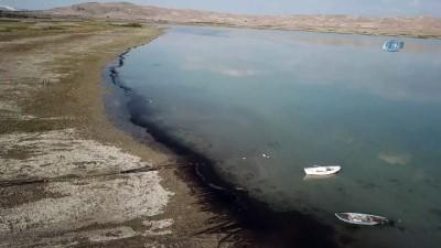 Karataş ve Çorak Gölü'ndeki su kuşları havadan görüntülendi