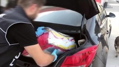 narkotik - Otomobildeki uyuşturucu hapları 'Şans' buldu - ADANA