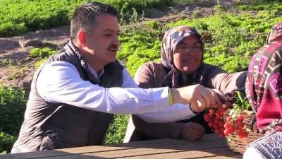Bakan Pakdemirli, devletten destek alan çiftçilerle buluştu (1) - ANKARA