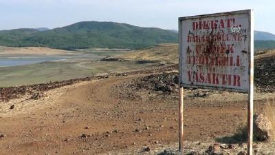 Gaziantep'te balık ölümleri
