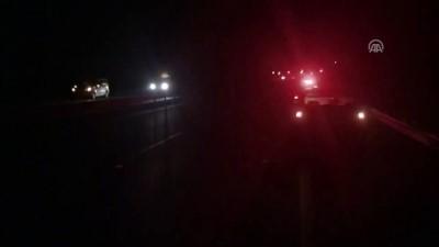 ticari arac - Hafif ticari araç domuz sürüsüne çarptı: 4 yaralı - SAKARYA
