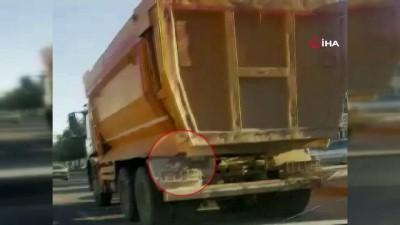 Hafriyat kamyonunda davetsiz misafir...Kedi kamyona tutunarak yolculuk etti