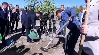 Hükümlüler Erzincan'da fidan dikti