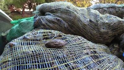 Kaçak avcılıkla mücadele - ÇANAKKALE