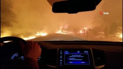 trol -  - Kaliforniya'daki Orman Yangınlarında Ölü Sayısı 44'e Yükseldi