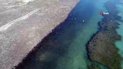 150 yıllık mezarlık sular çekilince gün yüzüne çıktı