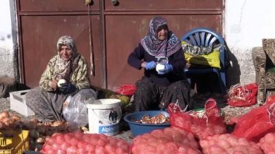 'Ekmeklerini' soğandan çıkarıyorlar - AFYONKARAHİSAR