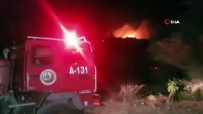 jandarma -  Manavgat'ta orman yangını